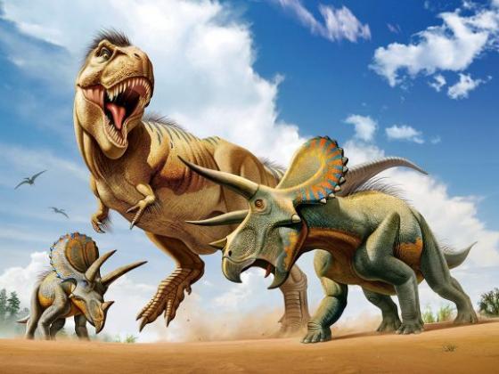Стерео пазл 500 элементов Prime 3d Тираннозавр против трицератопса