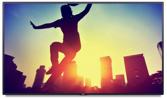 Купить Телевизор LED 48 NEC MultiSync P484 черный 1920x1080 60 Гц VGA HDMI 1 x DVI-D Line-in RS-232C USB DisplayPort 07AK1GBN