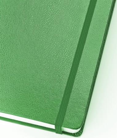 Бизнес-Блокнот А5, 100 л., твердая обложка, балакрон, на резинке, BV, Зеленый, 3-101/03 бизнес блокнот а5 100 л твердая обложка балакрон на резинке bv зеленый 3 101 03
