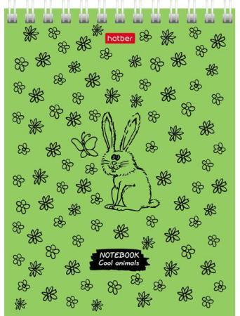 "Блокнот А6, 40 листов, гребень, обложка картон, HATBER, ""COOL Animals"", 110х145мм, 40Б6В1гр"