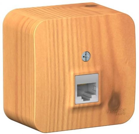 Розетка SCHNEIDER ELECTRIC BLNIA045005 Blanca компьютерная оп rj45 кат.5e изол. пласт. ясень розетка wessen59 rsi 152k5e 18 белый компьютерная 1 ая rj45 кат 5e в сборе с рамкой