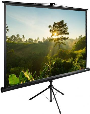 Экран Cactus TriExpert CS-PSTE-200x200-BK 200x200 см 1:1 напольный рулонный