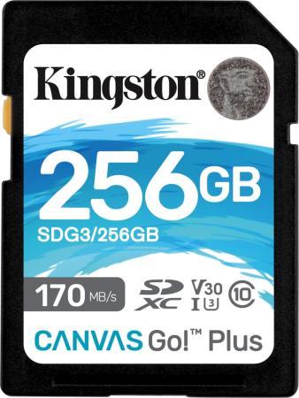 Фото - Карта памяти SDXC Kingston Canvas Go Plus, 256 Гб, UHS-I Class U3 V30 карта памяти compact flash kingston canvas focus 128 гб