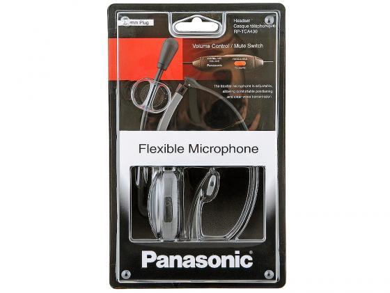 Гарнитура Panasonic RP-TCA430E-S Silver