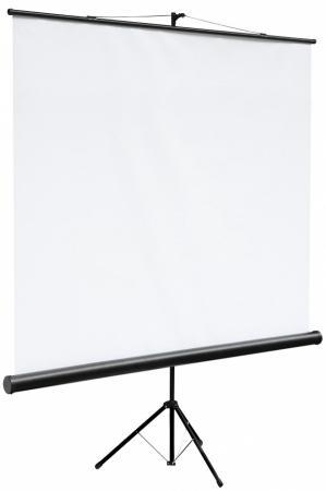 цена на Экран на штативе Digis DSKC-1101 Kontur-C 160x160см