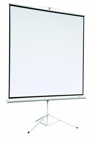 лучшая цена Экран на штативе Digis DSKA-4304 Kontur-A 165x220см 4:3
