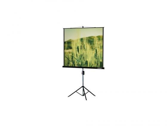 Экран на штативе Lumien Master View 165х220см Matte White FiberGlass LMV-100113 экран переносной на штативе elite screens yard master oms120h2 dual 149 x 266 см