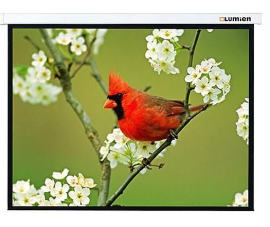 Экран настенный Lumien Master Picture 127х127см Matte White FiberGlass LMP-100101 цена