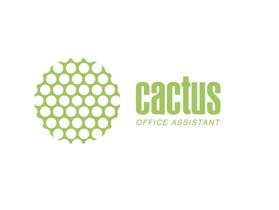 Фото - Бумага Cactus CS-MA619025 10x15см 190г/кв.м матовая 25л бумага cactus cs ma6190100 10x15см 190г кв м матовая 100л