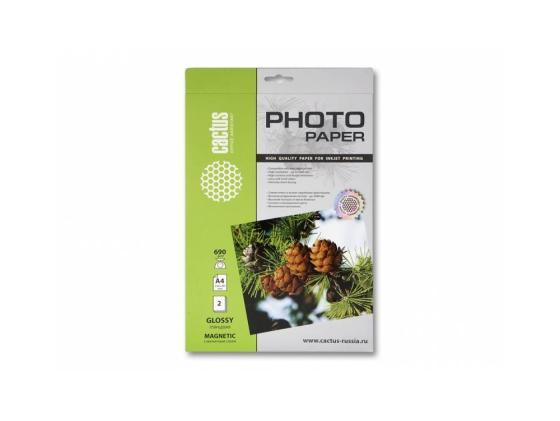 Фотобумага Cactus CS-MGA46902 А4 690г/м2 2л с магнитным слоем глянцевая