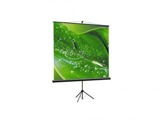 Экран на штативе Viewscreen Clamp TCL-1103 1:1 200х200см MW