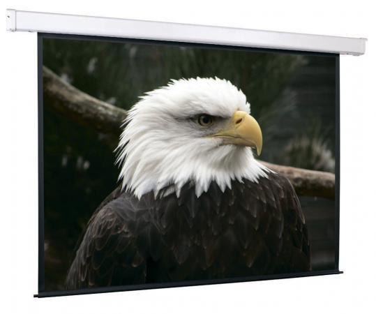 лучшая цена Экран настенный моторизированный ScreenMedia SCM-1105 213 x 213 см