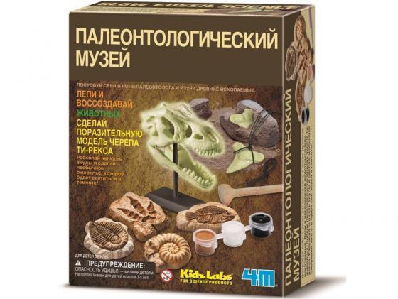 Игровой набор 4M Палеонтологический музей 00-03356