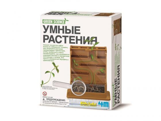 Игровой набор 4M Умные растения 00-3352 4m фигурки из формочки грузовики 4м