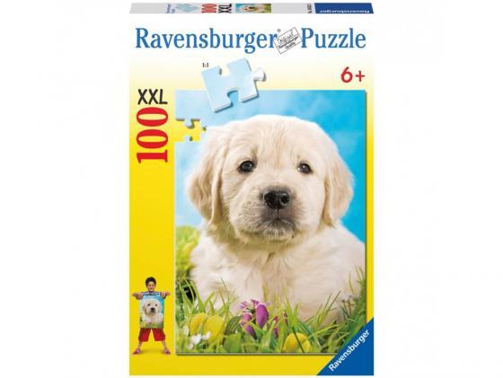 Пазл Ravensburger Милый щенок 100 элементов ravensburger пазл зачарованный лес xxl 100 деталей