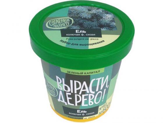 Набор для выращивания ВЫРАСТИ ДЕРЕВО Вырасти, дерево! Ель колючая zk-004 наборы для выращивания растений вырасти дерево набор для выращивания ель канадская голубая