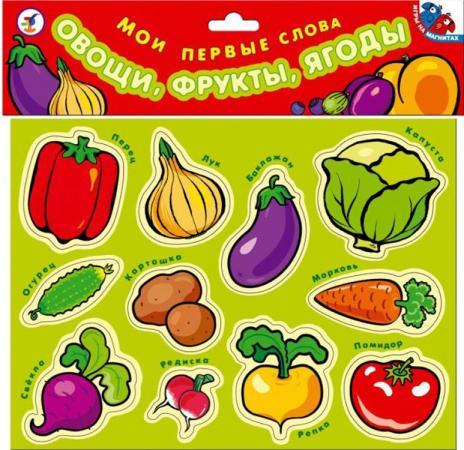 Набор магнитов Дрофа Мои первые слова. Овощи, фрукты, ягоды 1318 мои первые наклейки фрукты и ягоды