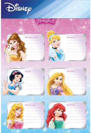 Decoretto Школьное расписание Принцессы LD 1005