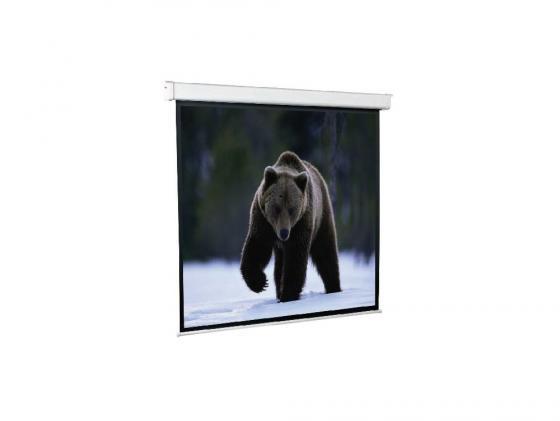 Фото - Экран настенный ScreenMedia SEM-1102 153 x 153 см наклейки зоомир 19 x 30 см с золотой окантовкой ассорти 6 диз п п с е подвесом 1