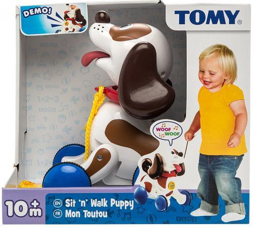Каталка на шнурке Tomy Веселый щенок на прогулке пластик от 10 месяцев музыкальная разноцветный 8887856918626 каталка детская tomy tomy каталка веселый щенок