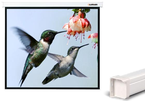 Экран настенный Lumien Master Control 184x220 см LMC-100113 стоимость