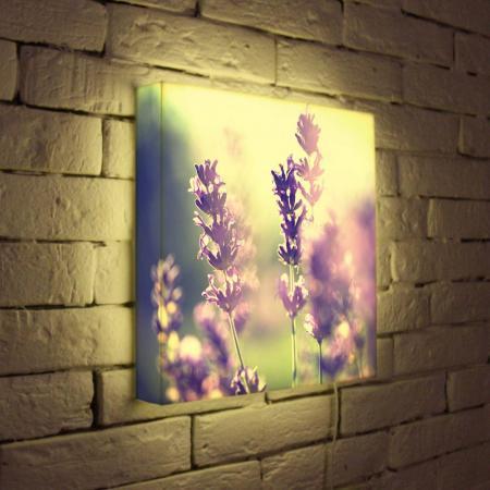 Лайтбокс Полевые цветы 35x35-044 лайтбокс полевые цветы 45x45 044