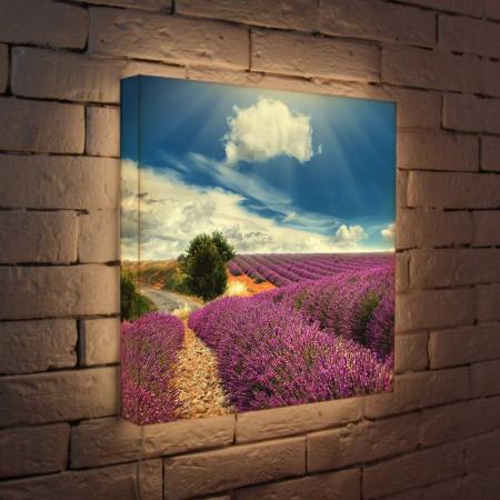 Лайтбокс Цветущие поля 45x45-034 fotoniobox лайтбокс цветущие поля 25x25 034