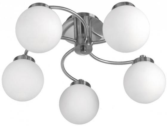 Потолочная люстра Arte Lamp Cloud A8170PL-5SS