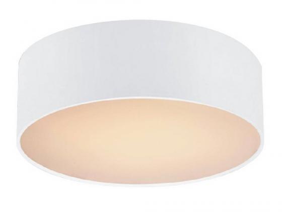 Потолочный светильник Favourite Cerchi 1515-2C накладной светильник favourite cerchi 1514 2c