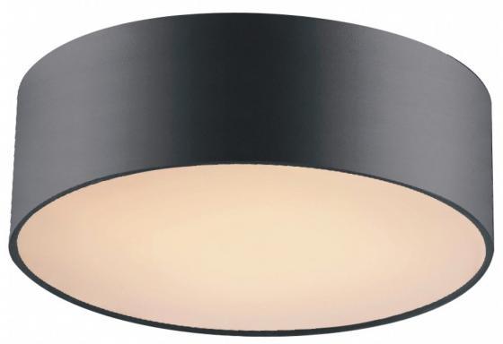Потолочный светильник Favourite Cerchi 1514-2C favourite 1514 2c