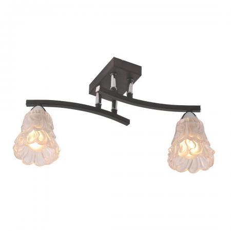 Потолочный светильник IDLamp Simone 217/2PF-Blackchrome накладной светильник idlamp 233 2pf blackchrome