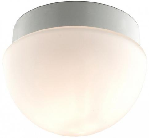 Потолочный светильник Odeon Minkar 2443/1B