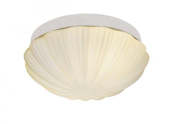 Потолочный светильник ST Luce Bagno SL495.502.02