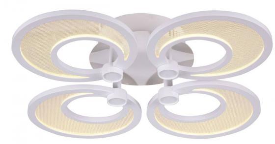 Светодиодный светильник ST Luce Nola SL898.502.04