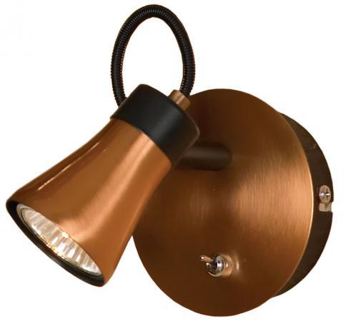 Спот Lussole Loft LSL-6801-01 цена