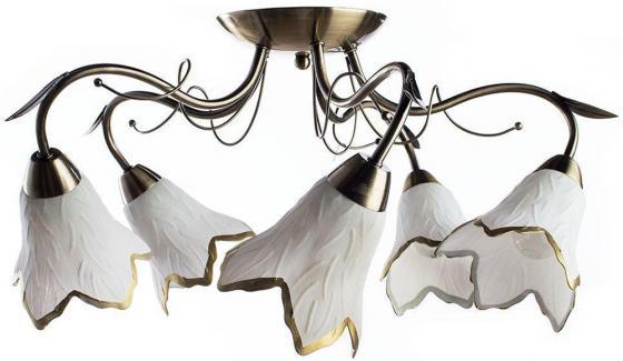 Купить Потолочная люстра Arte Lamp Barbara A6066PL-5AB