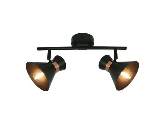 Спот Arte Lamp Baltimore A1406AP-2BK arte lamp спот arte lamp baltimore a1406ap 2bk