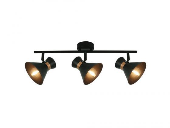 Спот Arte Lamp Baltimore A1406PL-3BK спот baltimore a1406pl 3wg arte lamp 1177869