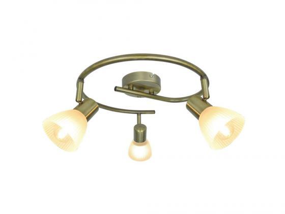 Спот Arte Lamp Parry A5062PL-3AB