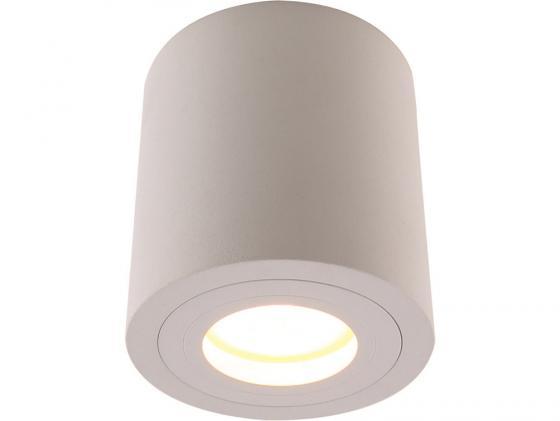 Потолочный светильник Divinare Galopin 1460/03 PL-1 накладной светильник divinare galopin 1460 04 pl 1