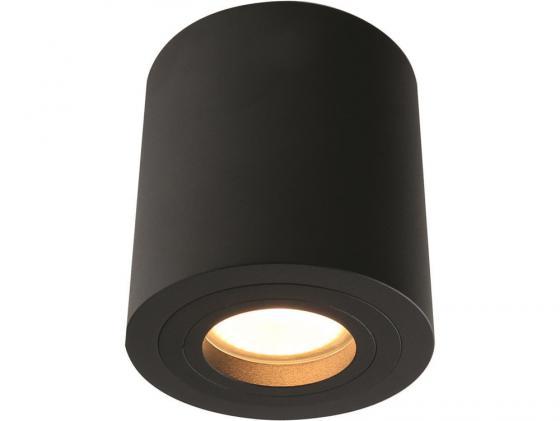 Потолочный светильник Divinare Galopin 1460/04 PL-1 накладной светильник divinare galopin 1460 04 pl 1
