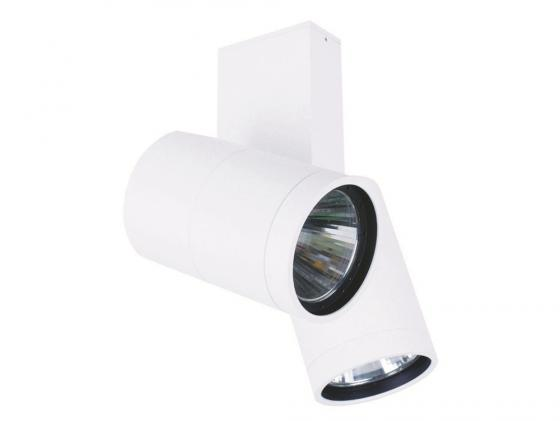 Потолочный светильник Donolux DL18422/12WW-White Dim