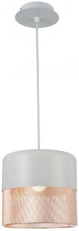 Подвесной светильник ST Luce SL976.443.01 5284 832 оправа