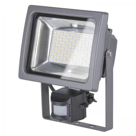 Прожектор светодиодный Elektrostandard 003 FL LED 30W 6500К 4690389080500 гиря 32 кг iron head медведь