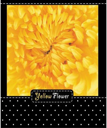 Тетрадь общая Action! Flower 48 листов клетка гребень ANS5-4801/5 в ассортименте сказки сказки сказки dvd