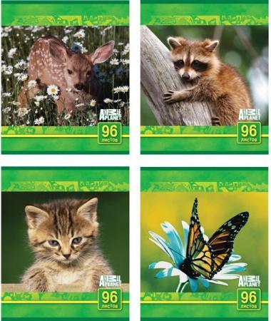 Тетрадь общая Action! Animal Planet 96 листов клетка скрепка AP-AN 9603/5 в ассортименте AP-AN 9603/5 тетрадь общая action черно белый мир 96 листов клетка скрепка an 9625 5 в ассортименте an 9625 5