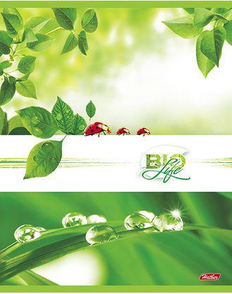 Тетрадь общая Хатбер Bio Life 96 листов клетка скоба 038246 в ассортименте тетрадь хатбер а5 96 листов клетка workbook синяя с тиснением