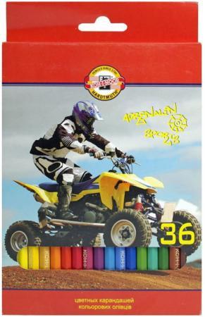Набор цветных карандашей Koh-i-Noor СПОРТ 36 шт 17.5 см 3555/36 7 KS 3555/36 7 KS набор цветных карандашей koh i noor сафари 36 шт 17 5 см 3555 36 s ks 3555 36 s ks