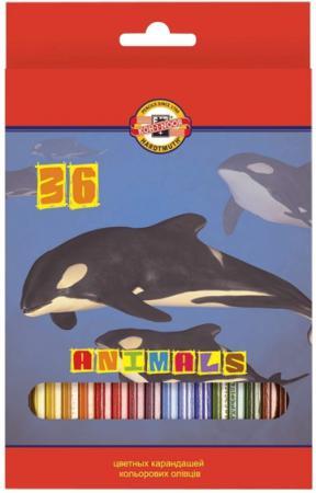 Набор цветных карандашей Koh-i-Noor ЖИВОТНЫЕ 36 шт 17.5 см 3555/36 8 KS 3555/36 8 KS
