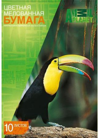 Цветная бумага Action! ANIMAL PLANET A4 10 листов AP-CCP-10/10 в ассортименте, мелованная набор цветного картона action animal planet a4 10 листов ap cc 10 10 2 в ассортименте